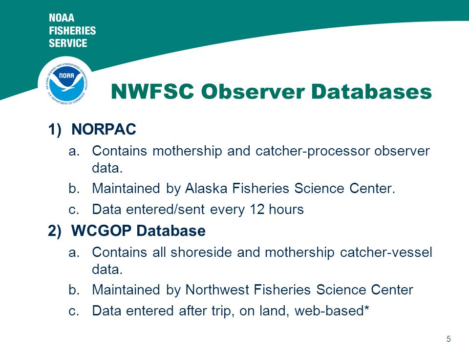 5 NWFSC Observer Databases 1)NORPAC a.Contains mothership and catcher-processor observer data.