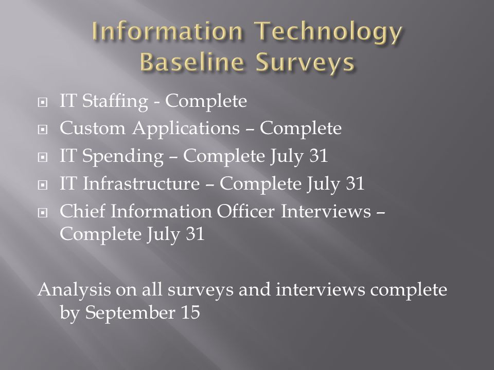  IT Staffing - Complete  Custom Applications – Complete  IT Spending – Complete July 31  IT Infrastructure – Complete July 31  Chief Information Officer Interviews – Complete July 31 Analysis on all surveys and interviews complete by September 15
