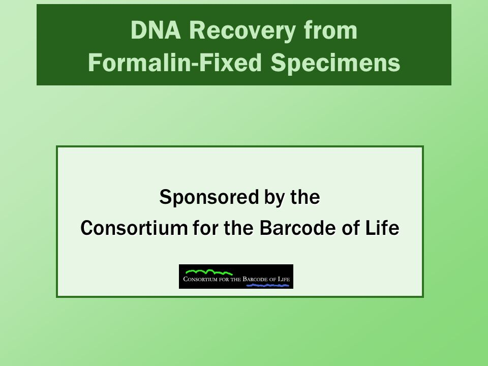 DNA Recovery from Formalin-Fixed Specimens by the Consortium for the Barcode of Life Sponsored by the Consortium for the Barcode of Life