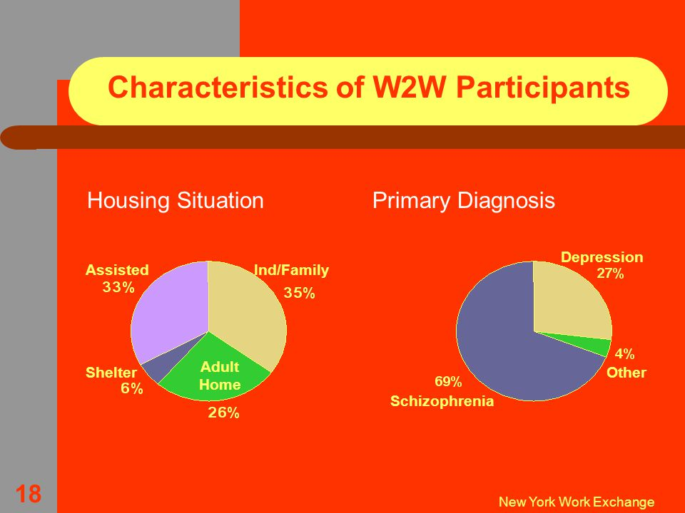 New York Work Exchange 18 Characteristics of W2W Participants Housing SituationPrimary Diagnosis Schizophrenia Other Depression AssistedInd/Family Shelter Adult Home