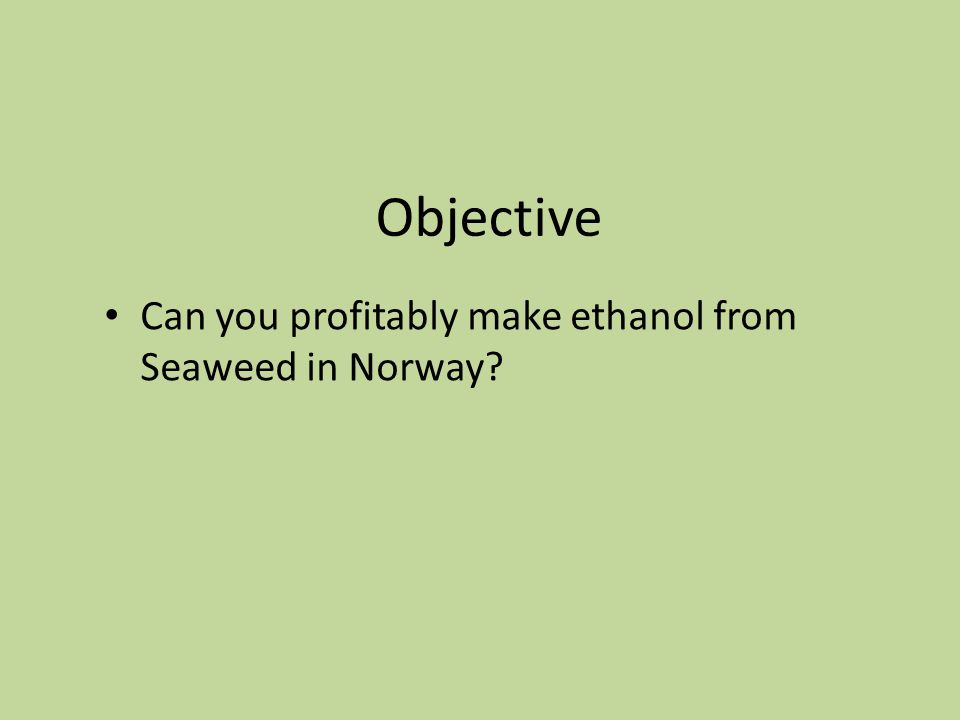 Objective Can you profitably make ethanol from Seaweed in Norway