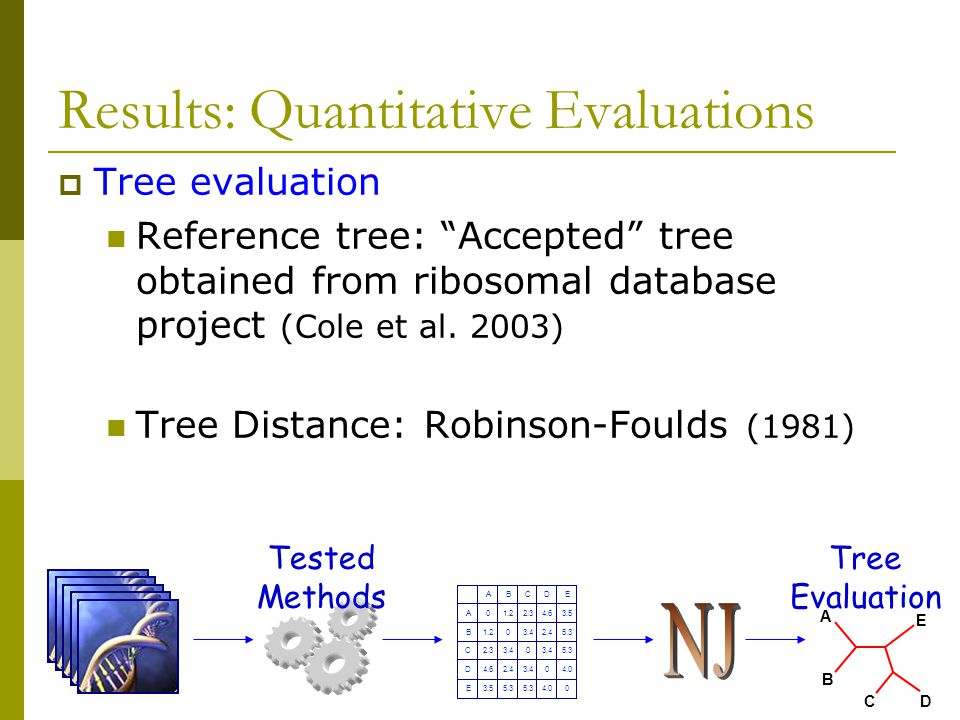  Tree evaluation Reference tree: Accepted tree obtained from ribosomal database project (Cole et al.