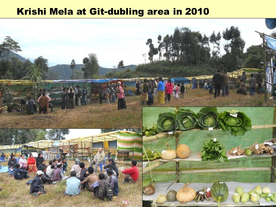 Krishi Mela at Git-dubling area in 2010