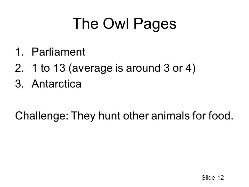 The Owl Pages 1.Parliament 2.1 to 13 (average is around 3 or 4) 3.Antarctica Challenge: They hunt other animals for food.