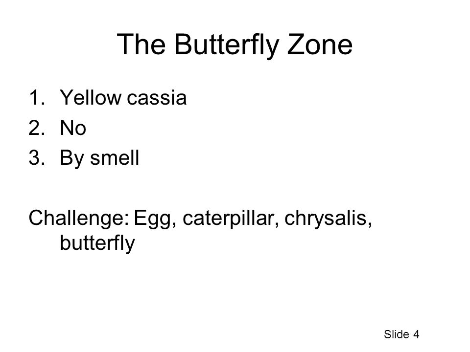 The Butterfly Zone 1.Yellow cassia 2.No 3.By smell Challenge: Egg, caterpillar, chrysalis, butterfly Slide 4