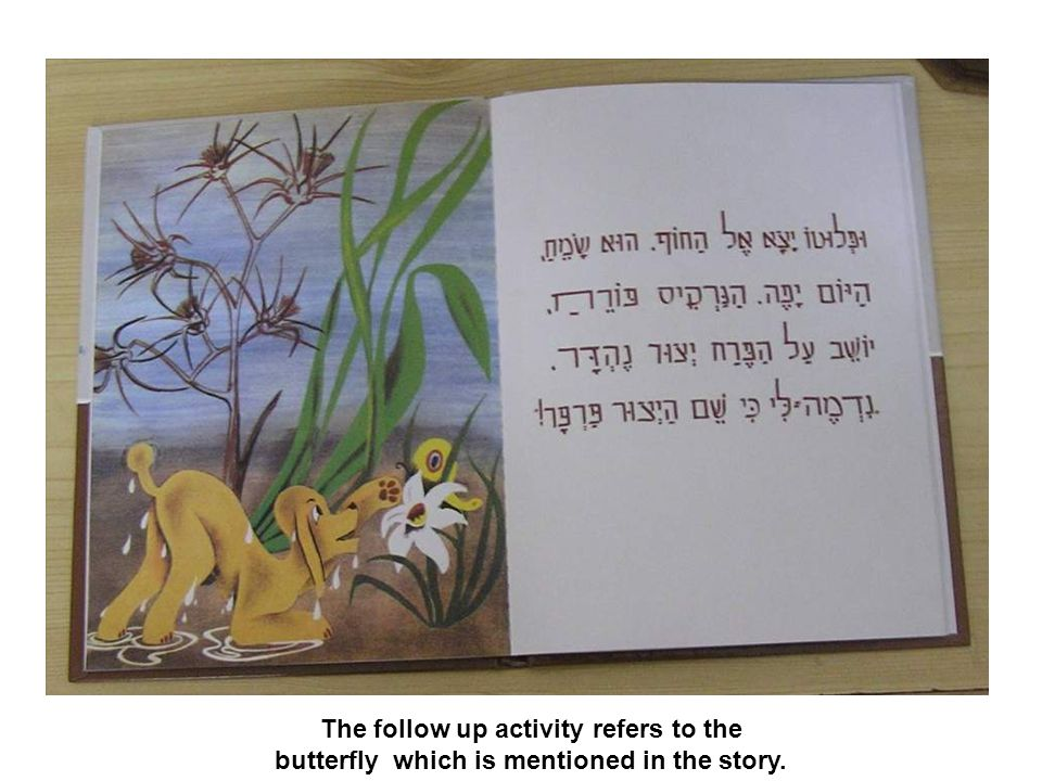 The follow up activity refers to the butterfly which is mentioned in the story.