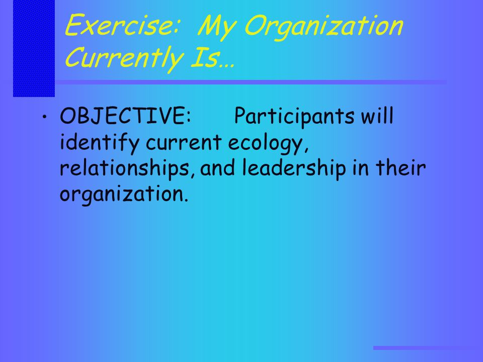 Exercise: My Organization Currently Is… OBJECTIVE: Participants will identify current ecology, relationships, and leadership in their organization.