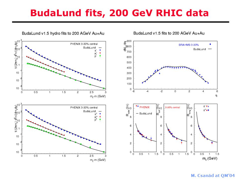 M. Csanád at QM'04 BudaLund fits, 200 GeV RHIC data