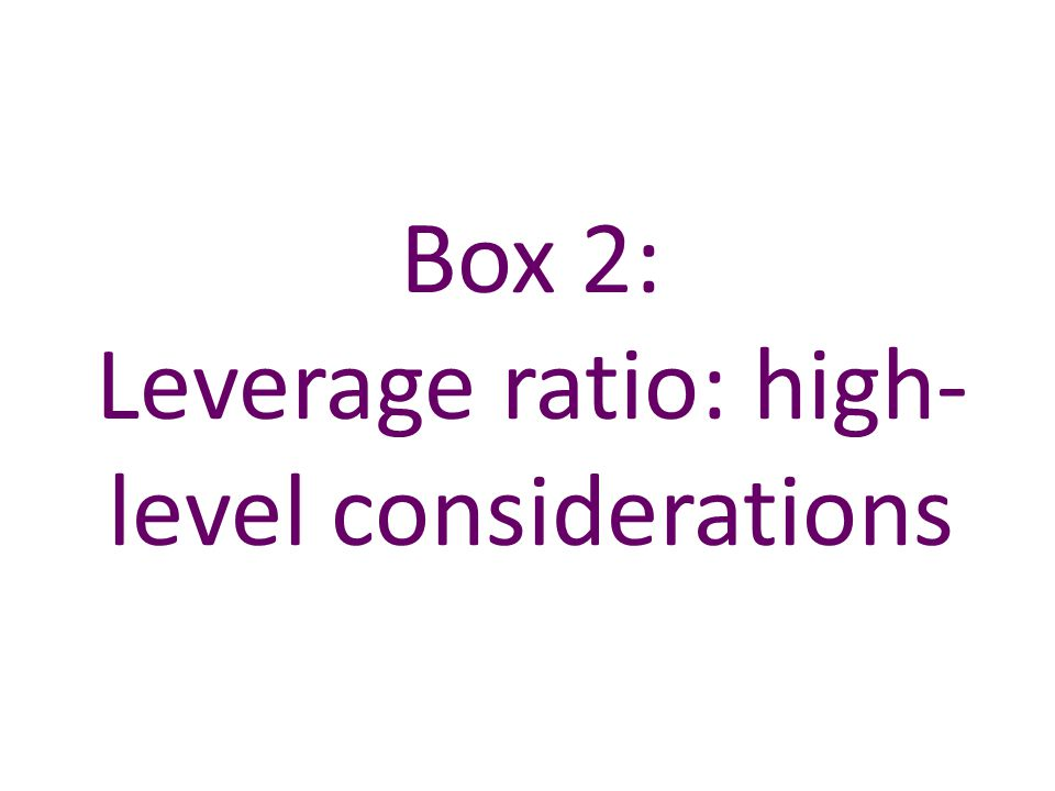 Box 2: Leverage ratio: high- level considerations