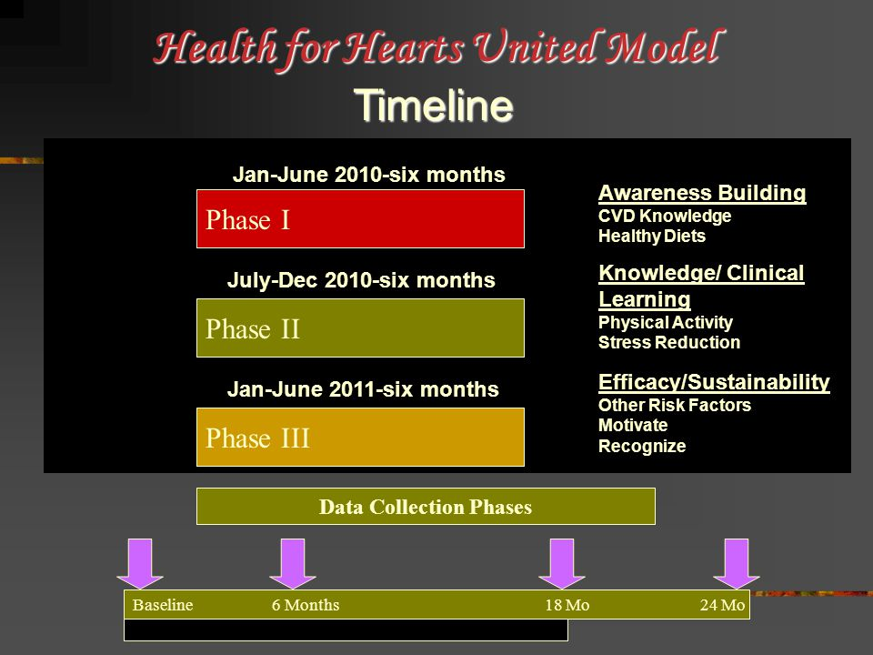 Phase I Jan-June 2010-six months Phase II Knowledge/ Clinical Learning Physical Activity Stress Reduction July-Dec 2010-six months Phase III Jan-June 2011-six months Efficacy/Sustainability Other Risk Factors Motivate Recognize Awareness Building CVD Knowledge Healthy Diets Health for Hearts United Model Timeline Baseline 6 Months 18 Mo 24 Mo Data Collection Phases