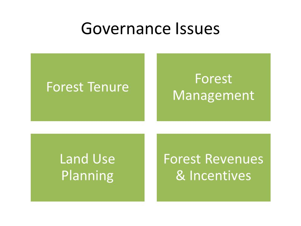 Governance Issues Forest Tenure Forest Management Land Use Planning Forest Revenues & Incentives