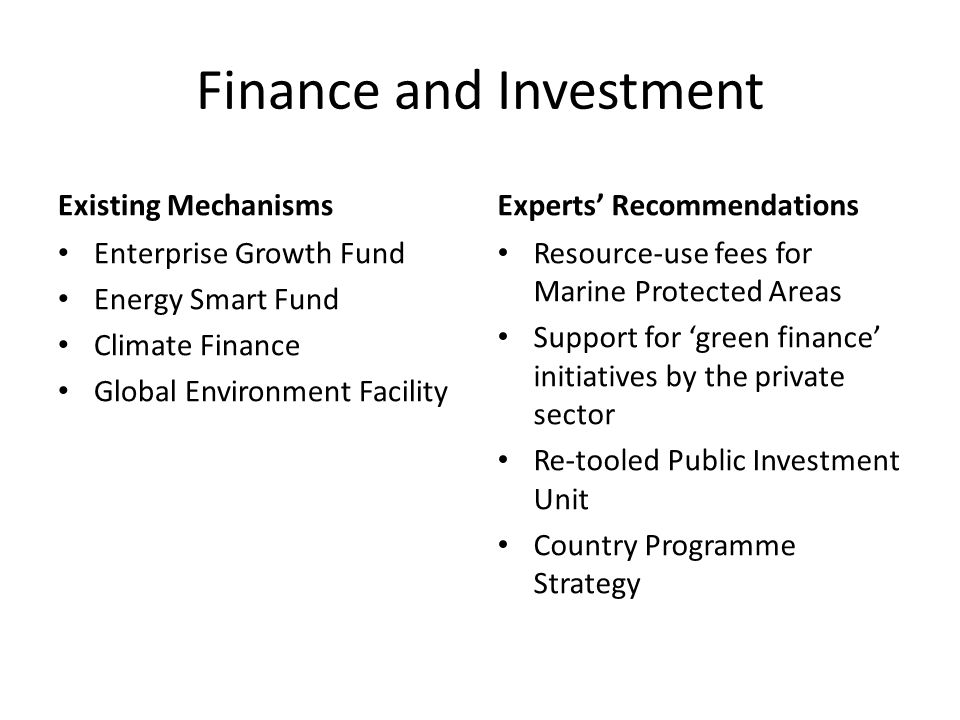 Finance and Investment Existing Mechanisms Enterprise Growth Fund Energy Smart Fund Climate Finance Global Environment Facility Experts' Recommendations Resource-use fees for Marine Protected Areas Support for 'green finance' initiatives by the private sector Re-tooled Public Investment Unit Country Programme Strategy