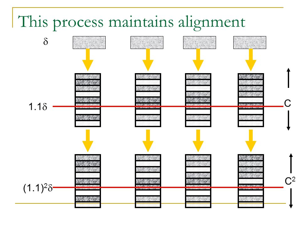 This process maintains alignment  1.1  C (1.1) 2  C2C2