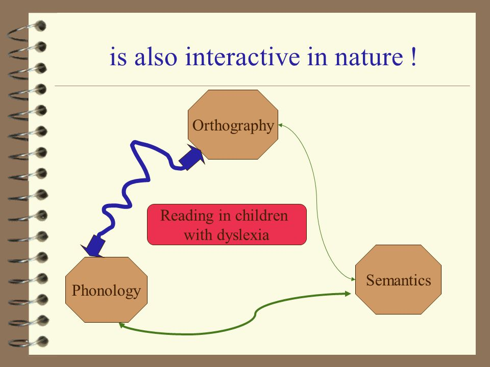 is also interactive in nature ! Reading in children with dyslexia Orthography Semantics Phonology