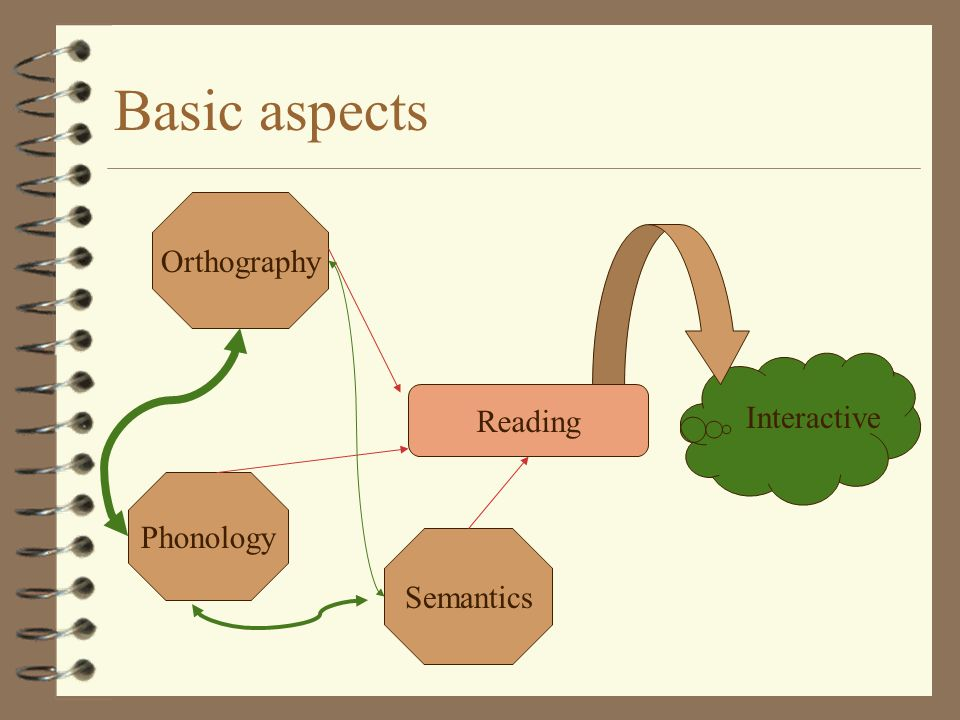 Basic aspects Reading Orthography Semantics Phonology Interactive