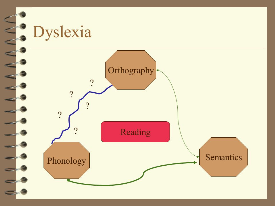 Dyslexia Reading Orthography Semantics Phonology