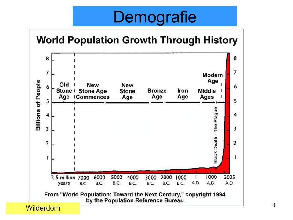 4 Demografie Wilderdom