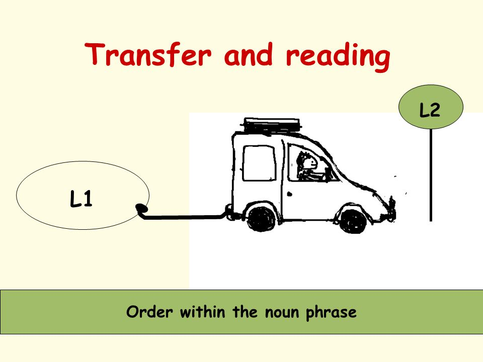 Transfer and reading L1 L2 Order within the noun phrase