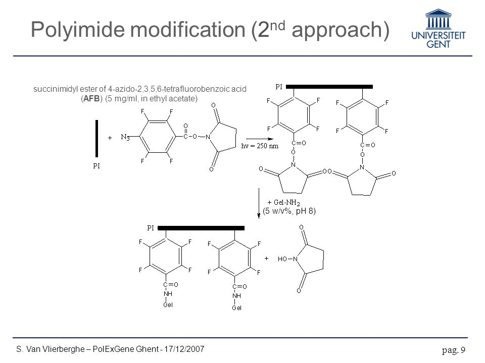 Polyimide modification (2 nd approach) S. Van Vlierberghe – PolExGene Ghent - 17/12/2007 pag.