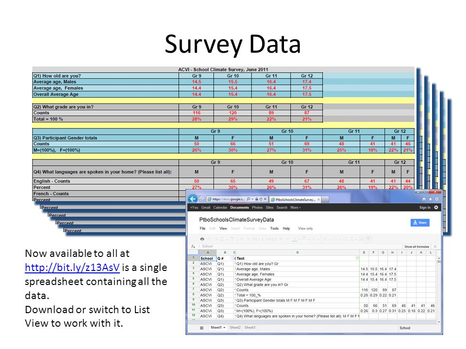 Survey Data Now available to all at http://bit.ly/z13AsV is a single spreadsheet containing all the data.