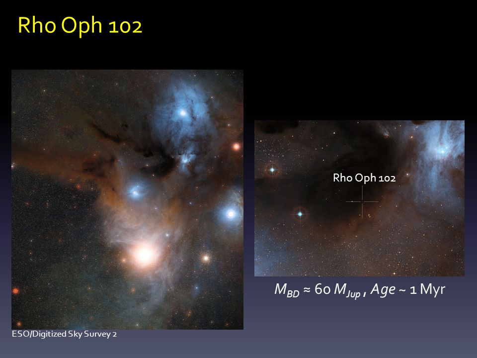Rho Oph 102 M BD ≈ 60 M Jup, Age ~ 1 Myr Rho Oph 102 ESO/Digitized Sky Survey 2