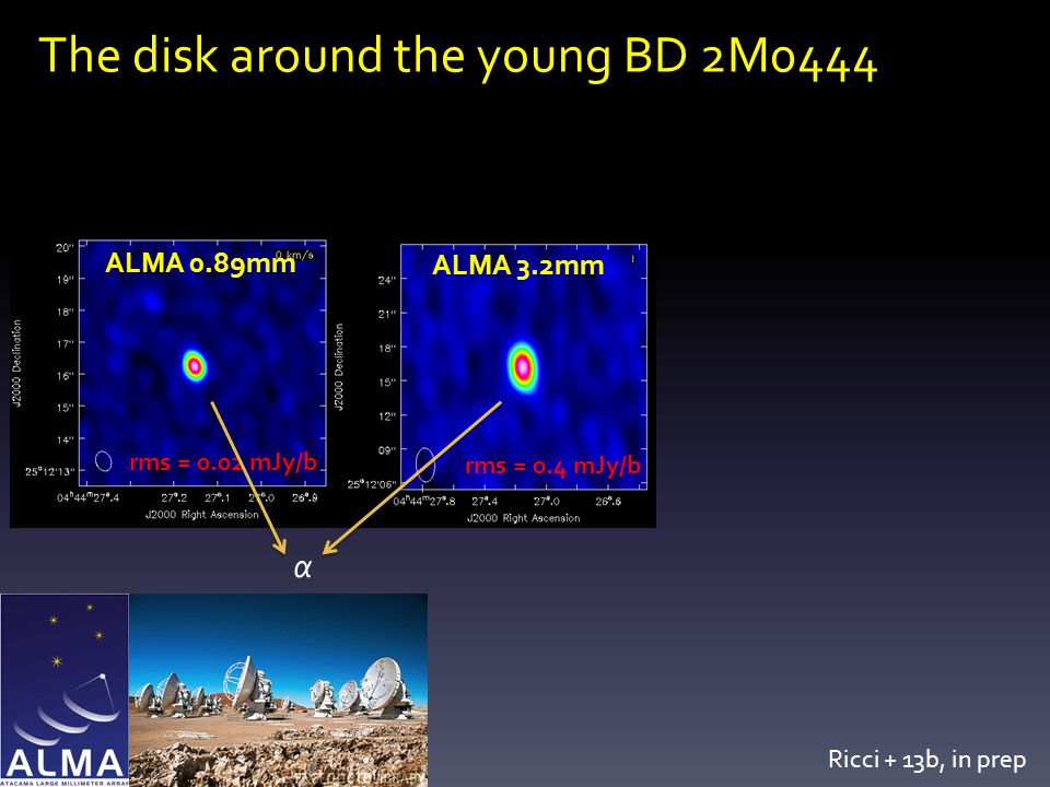 The disk around the young BD 2M0444 α ALMA 0.89mm ALMA 3.2mm rms = 0.02 mJy/b rms = 0.4 mJy/b Ricci + 13b, in prep
