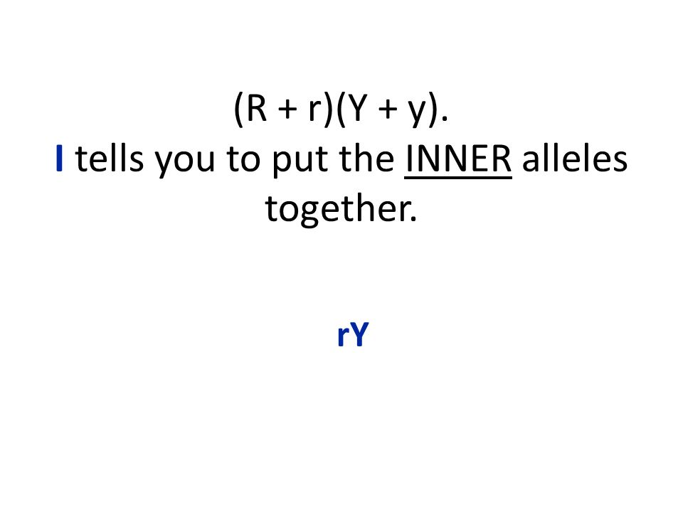 (R + r)(Y + y). I tells you to put the INNER alleles together. rY