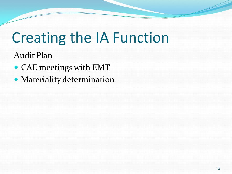 Creating the IA Function Audit Plan CAE meetings with EMT Materiality determination 12