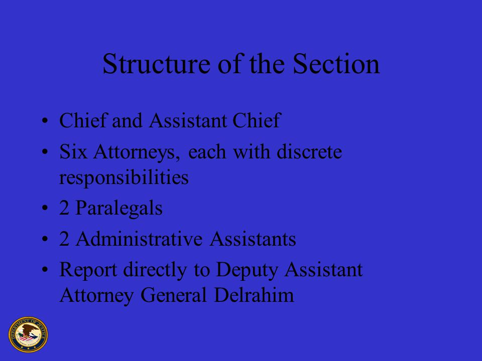 Structure of the Section Chief and Assistant Chief Six Attorneys, each with discrete responsibilities 2 Paralegals 2 Administrative Assistants Report directly to Deputy Assistant Attorney General Delrahim