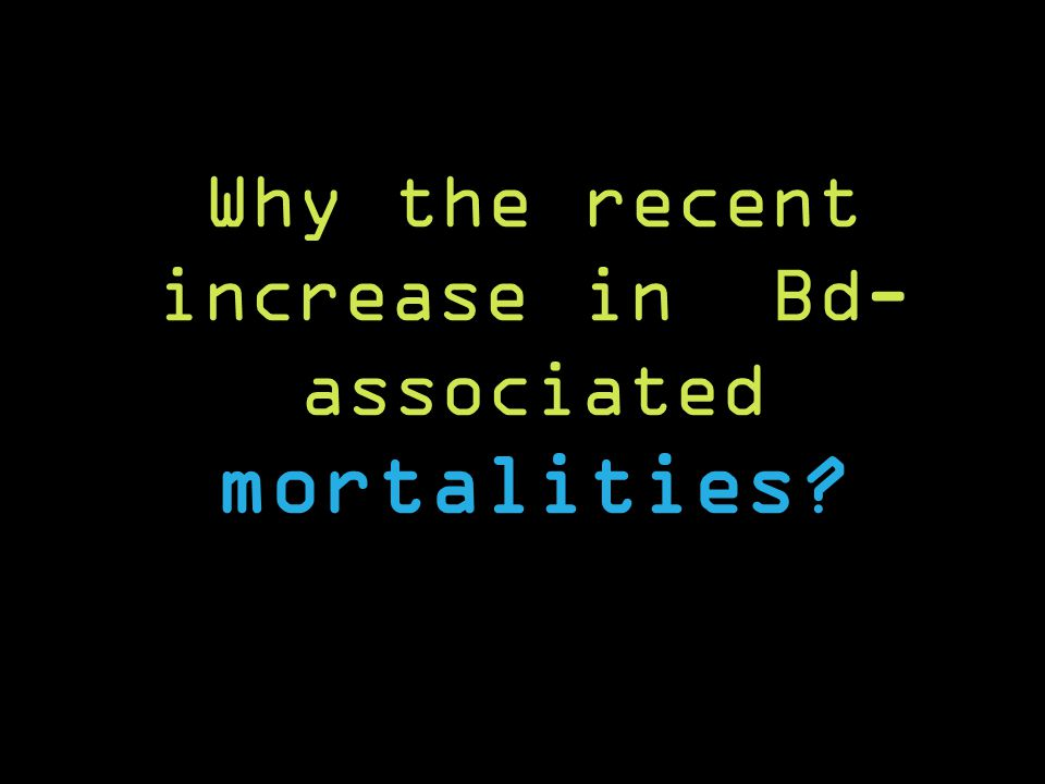 Why the recent increase in Bd- associated mortalities