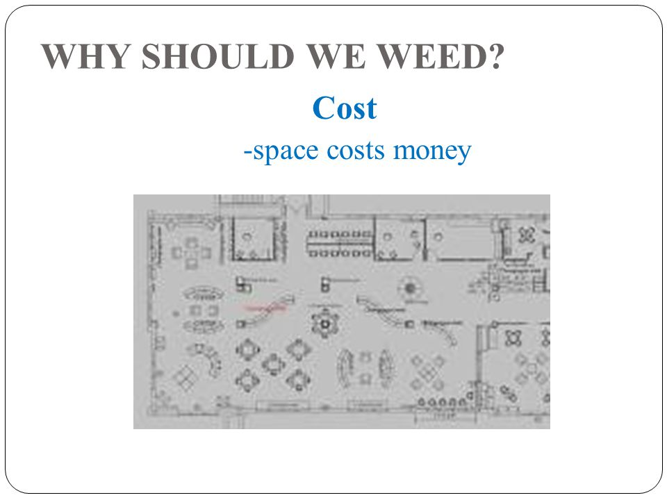 WHY SHOULD WE WEED Cost -space costs money