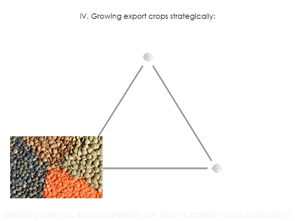 International Development of Regulatory Globalization IV. Growing export crops strategically: