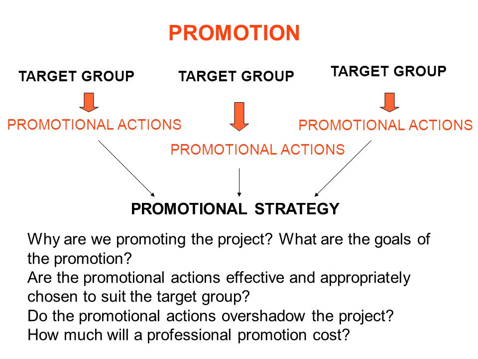 PROMOTION TARGET GROUP PROMOTIONAL ACTIONS PROMOTIONAL STRATEGY Why are we promoting the project.