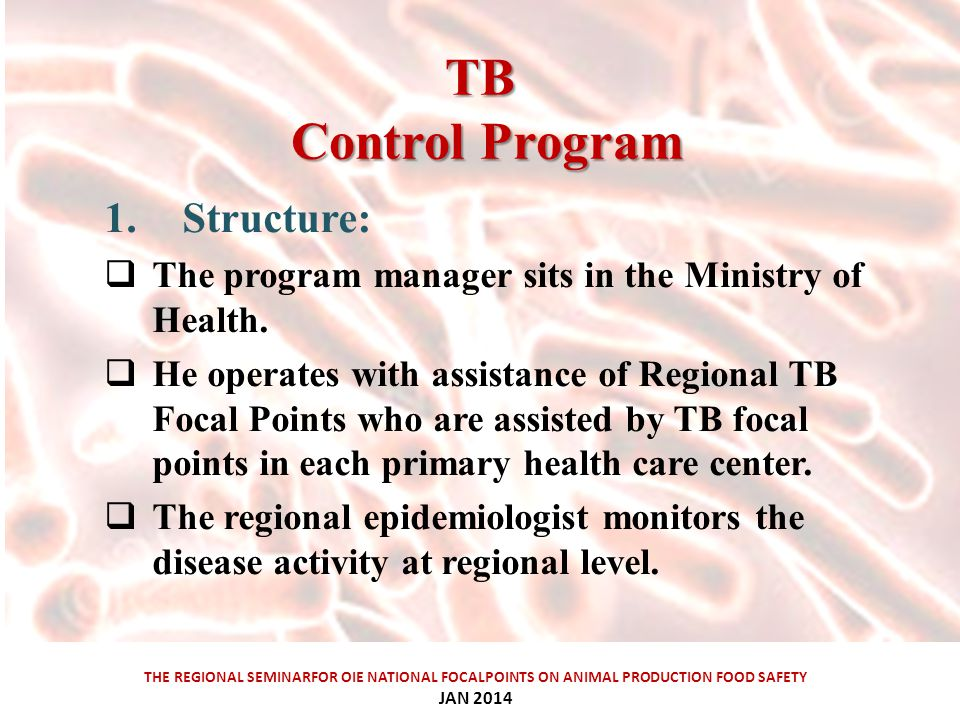 TB ControlProgram TB Control Program THE REGIONAL SEMINARFOR OIE NATIONAL FOCALPOINTS ON ANIMAL PRODUCTION FOOD SAFETY JAN Structure:  The program manager sits in the Ministry of Health.