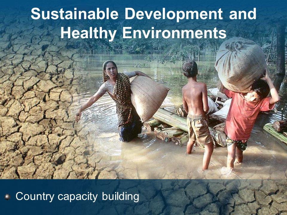 Sustainable Development and Healthy Environments Country capacity building