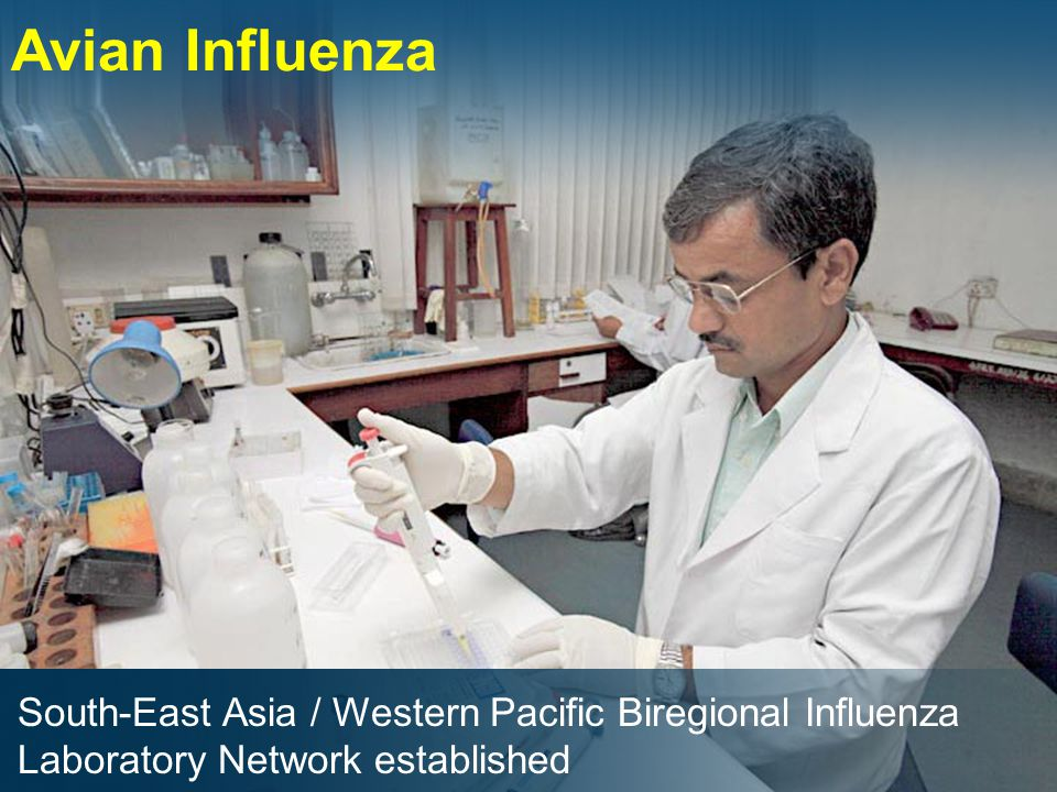 Avian Influenza South-East Asia / Western Pacific Biregional Influenza Laboratory Network established