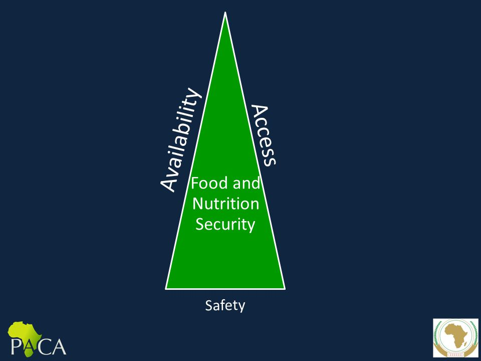 Availability Access Food and Nutrition Security Safety