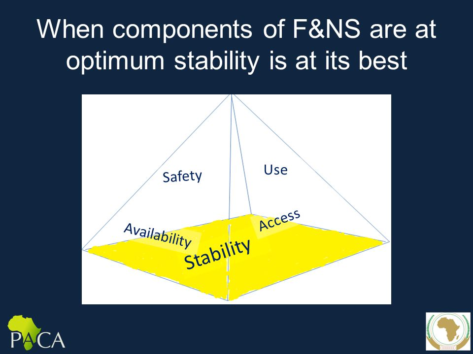When components of F&NS are at optimum stability is at its best Stability Safety Use Availability Access