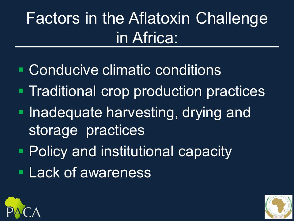 Factors in the Aflatoxin Challenge in Africa:  Conducive climatic conditions  Traditional crop production practices  Inadequate harvesting, drying and storage practices  Policy and institutional capacity  Lack of awareness