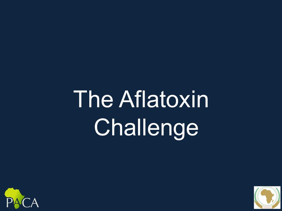 The Aflatoxin Challenge