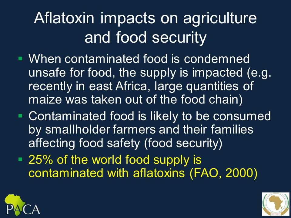 Aflatoxin impacts on agriculture and food security  When contaminated food is condemned unsafe for food, the supply is impacted (e.g.