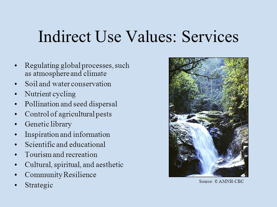 Indirect Use Values: Services Regulating global processes, such as atmosphere and climate Soil and water conservation Nutrient cycling Pollination and seed dispersal Control of agricultural pests Genetic library Inspiration and information Scientific and educational Tourism and recreation Cultural, spiritual, and aesthetic Community Resilience Strategic Source: © AMNH-CBC