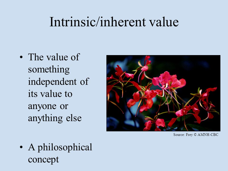Intrinsic/inherent value The value of something independent of its value to anyone or anything else A philosophical concept Source: Frey © AMNH-CBC