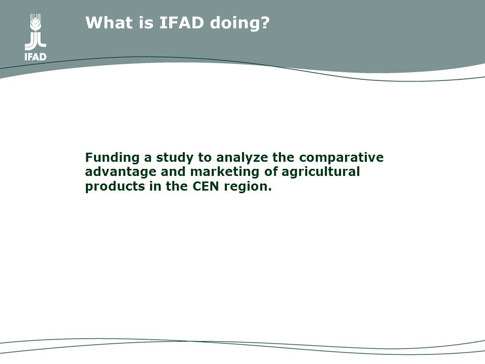 Funding a study to analyze the comparative advantage and marketing of agricultural products in the CEN region.