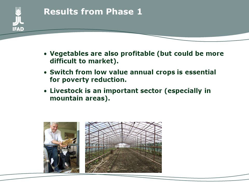 Vegetables are also profitable (but could be more difficult to market).