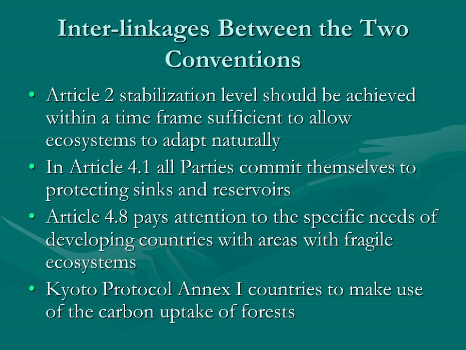 Inter-linkages Between the Two Conventions Article 2 stabilization level should be achieved within a time frame sufficient to allow ecosystems to adapt naturallyArticle 2 stabilization level should be achieved within a time frame sufficient to allow ecosystems to adapt naturally In Article 4.1 all Parties commit themselves to protecting sinks and reservoirsIn Article 4.1 all Parties commit themselves to protecting sinks and reservoirs Article 4.8 pays attention to the specific needs of developing countries with areas with fragile ecosystemsArticle 4.8 pays attention to the specific needs of developing countries with areas with fragile ecosystems Kyoto Protocol Annex I countries to make use of the carbon uptake of forestsKyoto Protocol Annex I countries to make use of the carbon uptake of forests