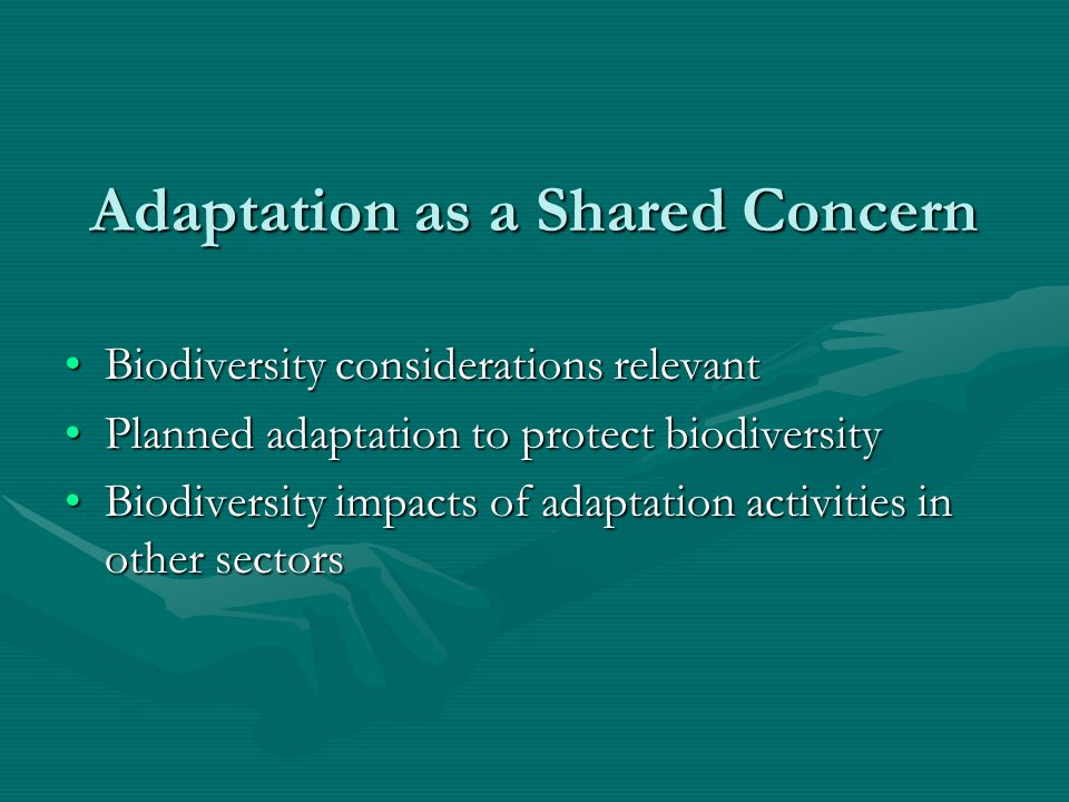 Adaptation as a Shared Concern Biodiversity considerations relevantBiodiversity considerations relevant Planned adaptation to protect biodiversityPlanned adaptation to protect biodiversity Biodiversity impacts of adaptation activities in other sectorsBiodiversity impacts of adaptation activities in other sectors
