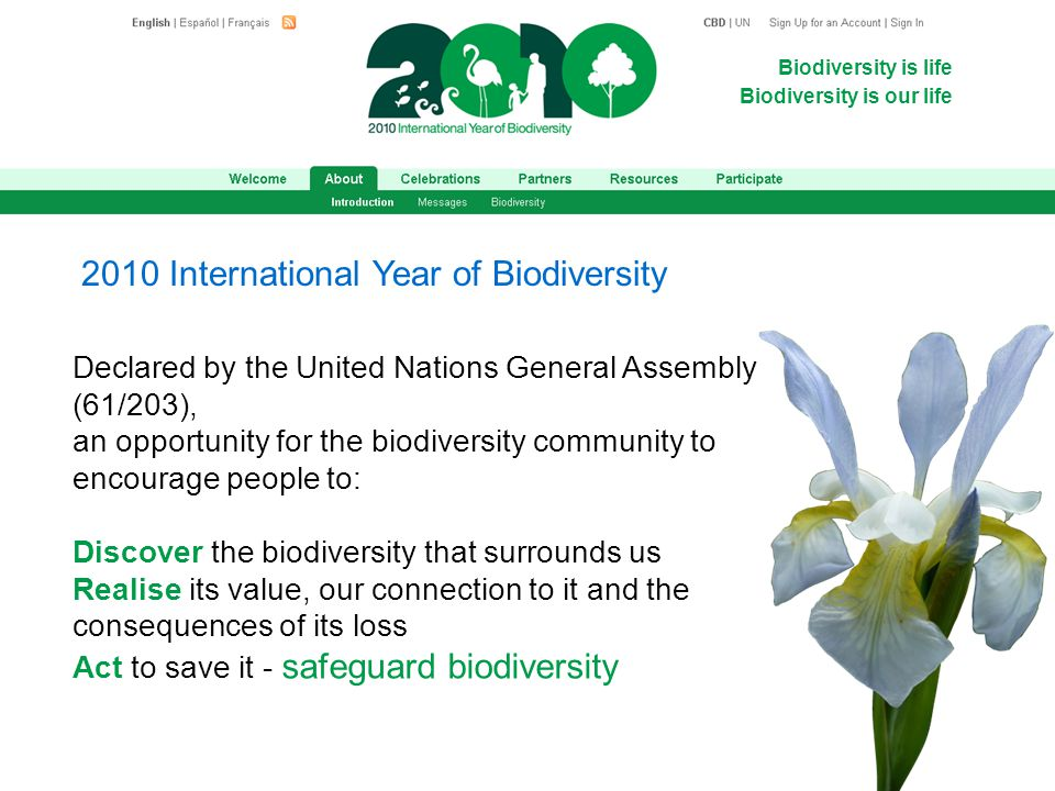 Biodiversity is life Biodiversity is our life Declared by the United Nations General Assembly (61/203), an opportunity for the biodiversity community to encourage people to: Discover the biodiversity that surrounds us Realise its value, our connection to it and the consequences of its loss Act to save it - safeguard biodiversity 2010 International Year of Biodiversity