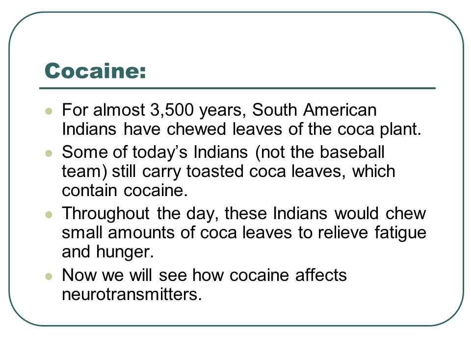 Cocaine: For almost 3,500 years, South American Indians have chewed leaves of the coca plant.