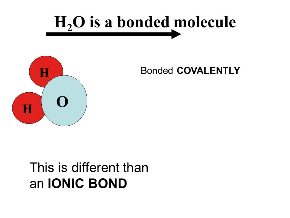 H 2 O is a bonded molecule H H O H H O + - & Bonded COVALENTLY This is different than an IONIC BOND